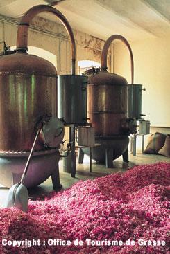 グラース香水工場